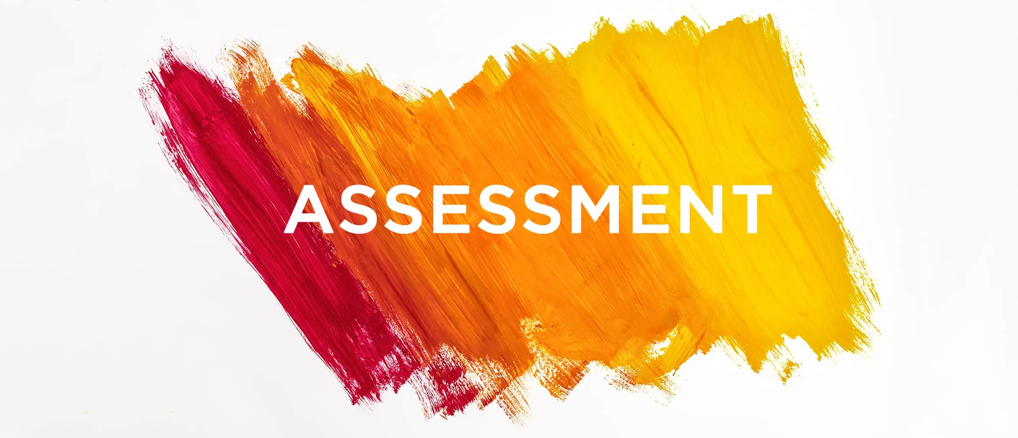 assessments pioneer academy